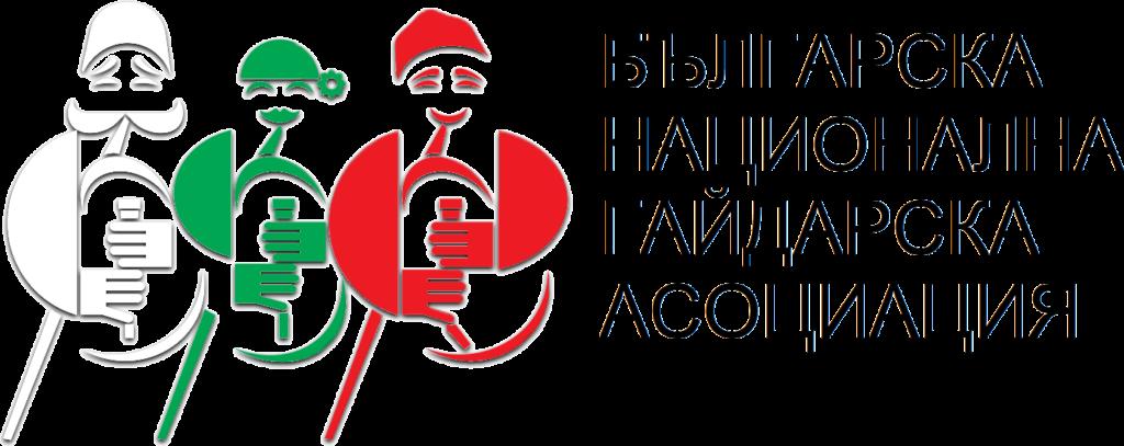лого бнга